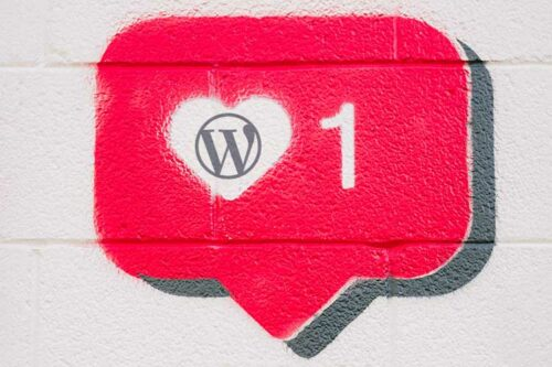 Example from Love a WordPress Plugin or Theme? Pay It Forward.